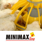 Minimaxline